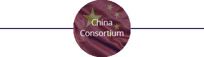 China Consortium 49%